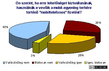 2002-ii-jelentes-vallalat-mobilfizetes